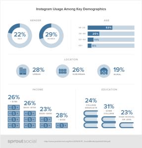 Social-Demographics-instagram