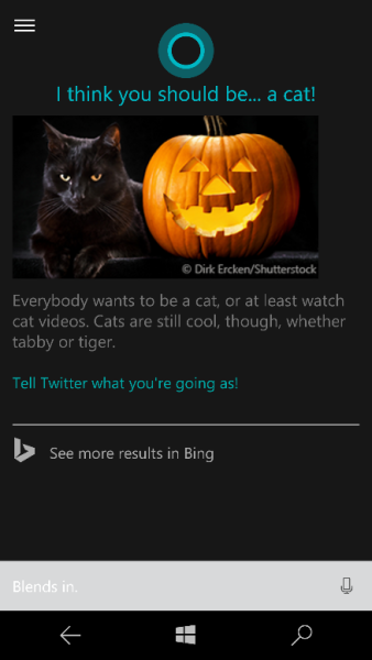 Bing-cortana-what-should-i-be-for-halloween-338x600